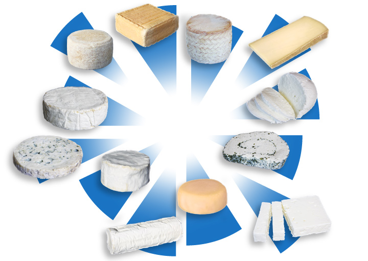 conditionnement air industrie fromagere